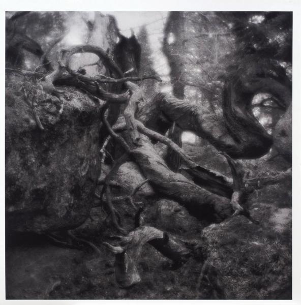 Шакарвис Стасис. «Без названия №3». 2012. Бумага, архивная пигментная печать. 58×58см.