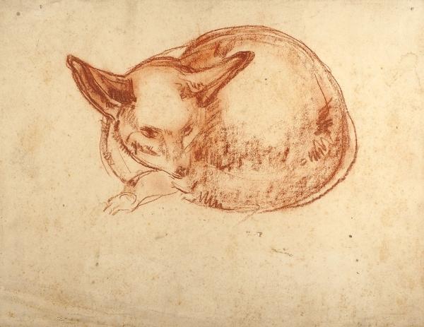 Грановский Самуил Соломонович (Самюэль, Хаим) (1889–1942) «Лисичка». 1930-е. Бумага, сангина, 24,6×32,2см.
