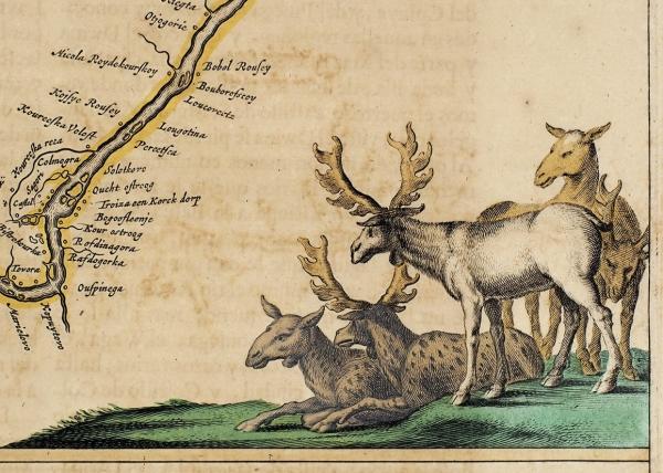 Карта реки Двины/ карт. В.Блау. [Dwina flvvivs]. Амстердам, 1664.