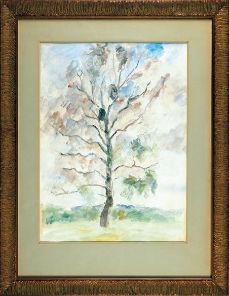 Фальк Роберт Рафаилович (1886–1958) «Дерево». 1956. Бумага, графитный карандаш, гуашь, 53,4x40см.